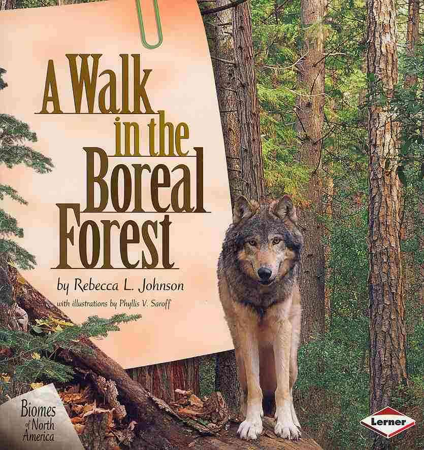 A Walk in the Boreal Forest By Johnson, Rebecca L./ Saroff, Phyllis V. (ILT)